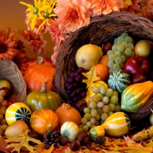 Giving Thanks (2 Chronicles 6-7)